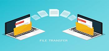 Vitalfiles Online File Sharing
